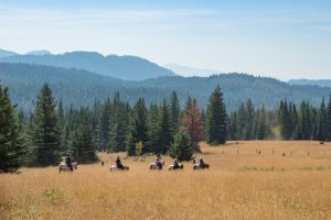 horseback riding at Western Pleasure Guest Ranch across an open ridge with mountains in the background