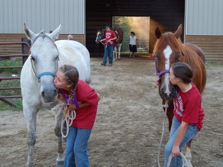Children entering outdoor arena