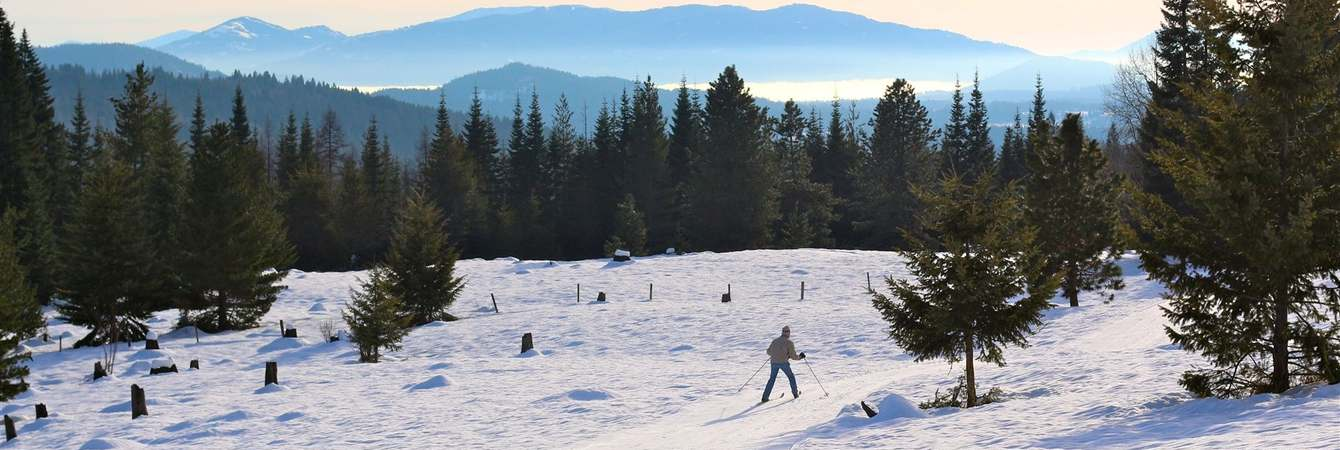 Nordic skiing down the big hill