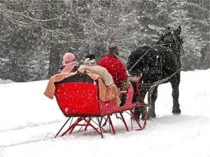fws-sleigh