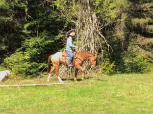 cowboy riding appaloosa horse in green grass
