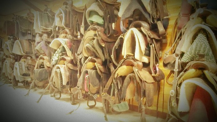 Wall of Saddles