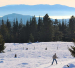 Nordic skiing on the big hill