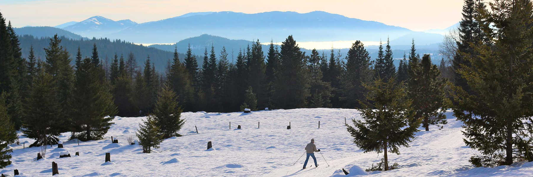 Things to do in Sandpoint