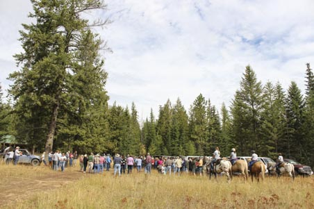 Idaho Tree Farm Tour 2016