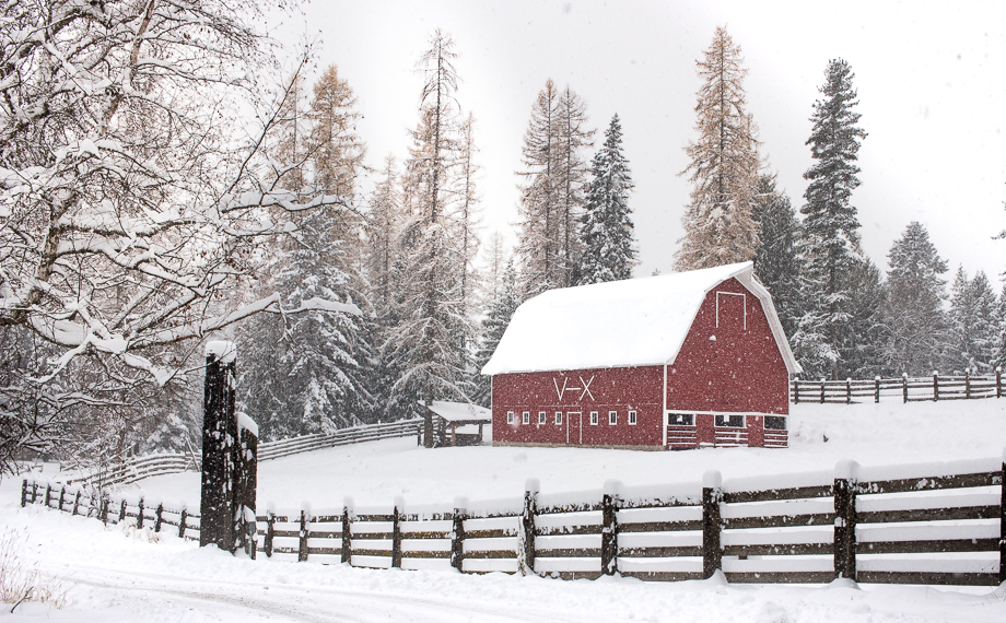 Winter Guest Ranch Barn