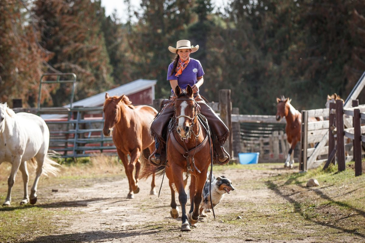 Cowgirl in chinks, purple shirt, scarf and cowboy hat smiling and riding a bay horse straight forward