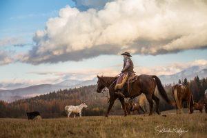 Western Lifestyle Cowboy Photography