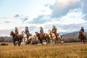 Riders on horses running in field