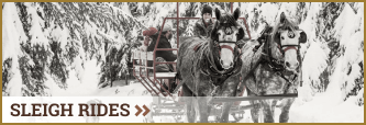 Click to read more about our sleigh rides