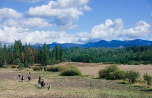 six people on a horseback ride adventure across a field with blue Idaho mountains in the background and blue sky overhead