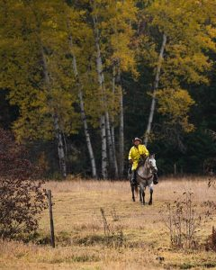 Cowboy riding his horse wearing a yellow slicker with yellow Aspen trees behind him